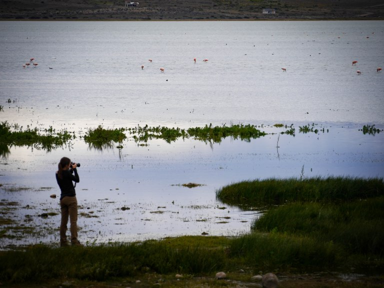 9th edited photo- calafate woman taking photo (1 of 1).jpg